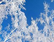 呼伦贝尔冬天旅游注意事项