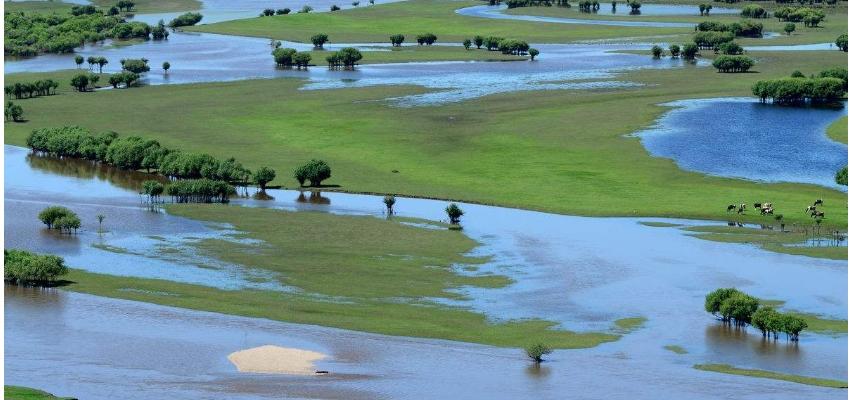 呼伦贝尔国家湿地森林公园