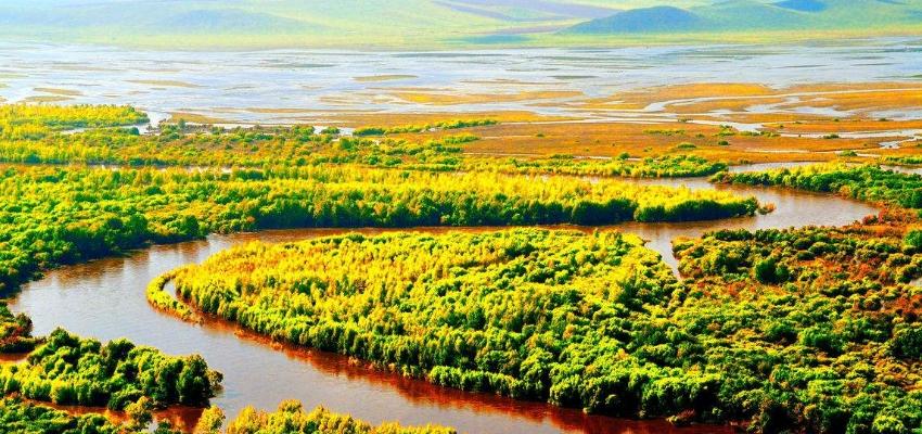 呼伦贝尔根河国家湿地森林公园