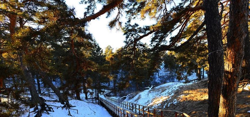 呼伦贝尔海拉尔西山公园