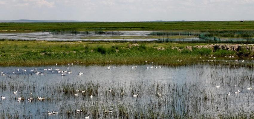 满洲里景点之二子湖介绍