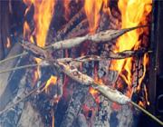 达斡尔冰钓节篝火燃情鱼味飘香