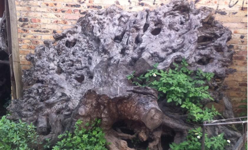 呼伦贝尔木雕根雕