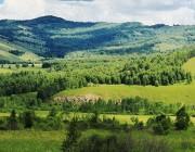 呼伦贝尔北线旅游攻略 呼伦贝尔大草原的北线有多美