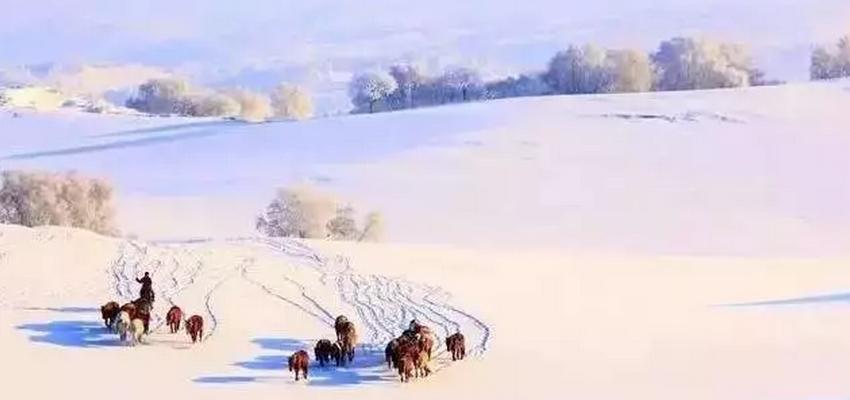 2018呼伦贝尔大草原冬季旅游