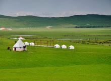 3天2晚呼伦贝尔大草原-呼伦湖-巴尔虎蒙古部落-红花尔基国三日游
