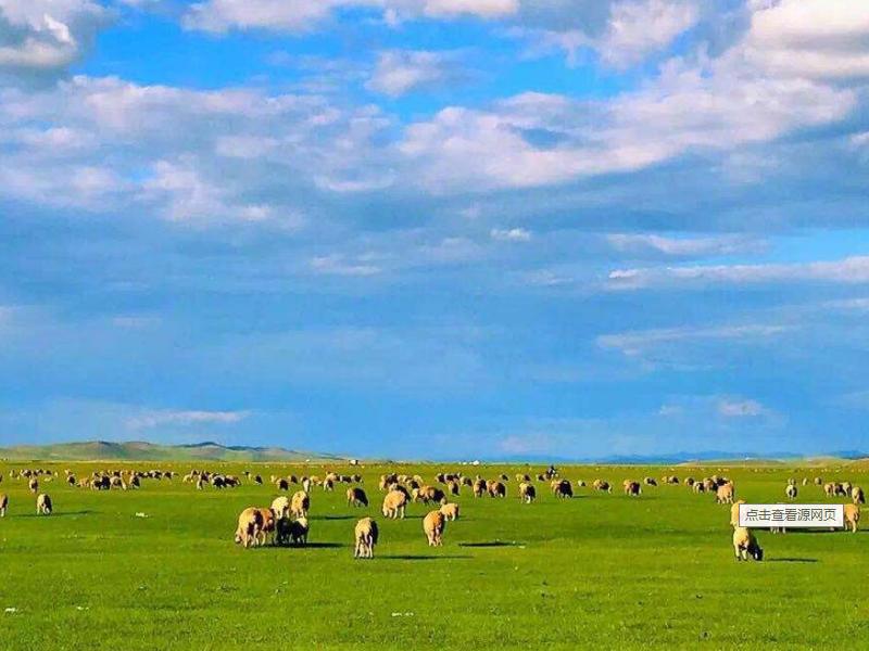 呼伦贝尔草原、室韦、阿尔山全线六日游攻略