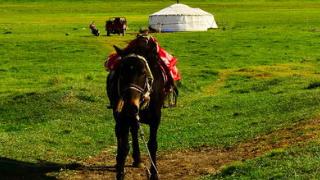 4天3夜呼伦贝尔大草原、满洲里口岸、阿尔山旅游线路