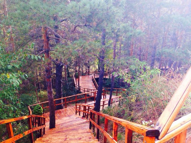 5天4晚满洲里口岸、大兴安岭原始森林旅游路线截图