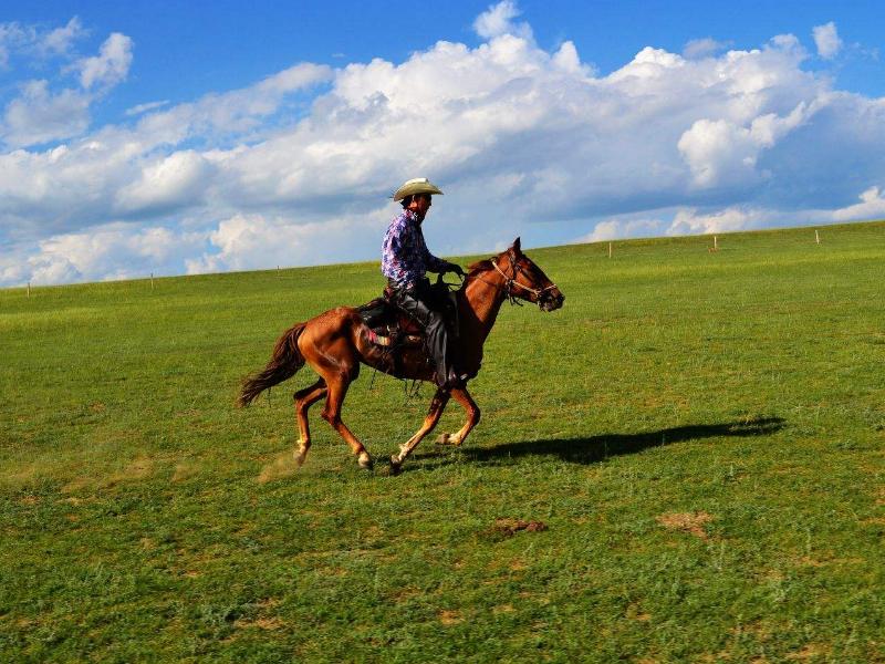 7天6晚呼伦贝尔根河-室韦-莫尔道嘎-满洲里路线草原骑马