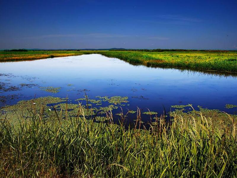 呼伦贝尔拉布大林开通到额尔古纳湿地公交旅游专线介绍