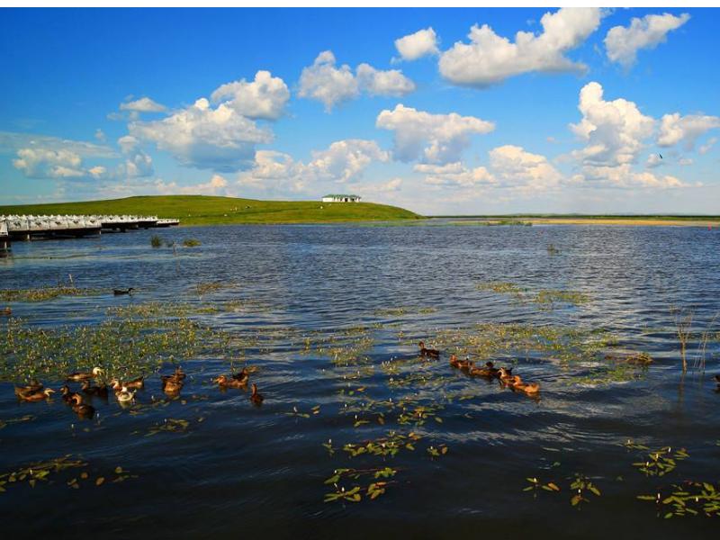 2天1晚满洲里-额尔古纳-巴尔虎景区旅游线路湿地