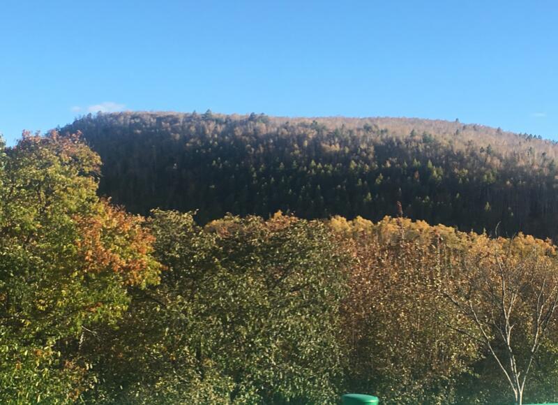 呼伦贝尔大草原秋季旅游游记