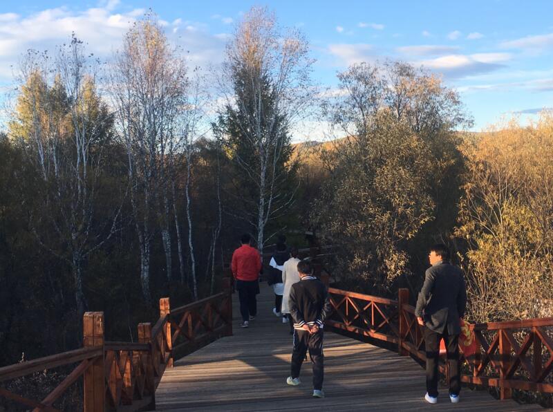2018呼伦贝尔大草原秋季旅游游记