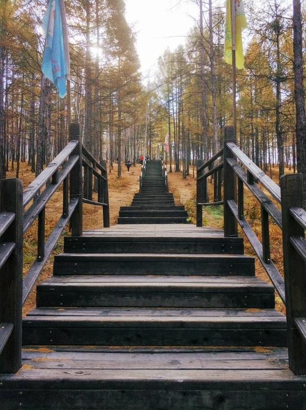 莫尔道嘎龙山公园