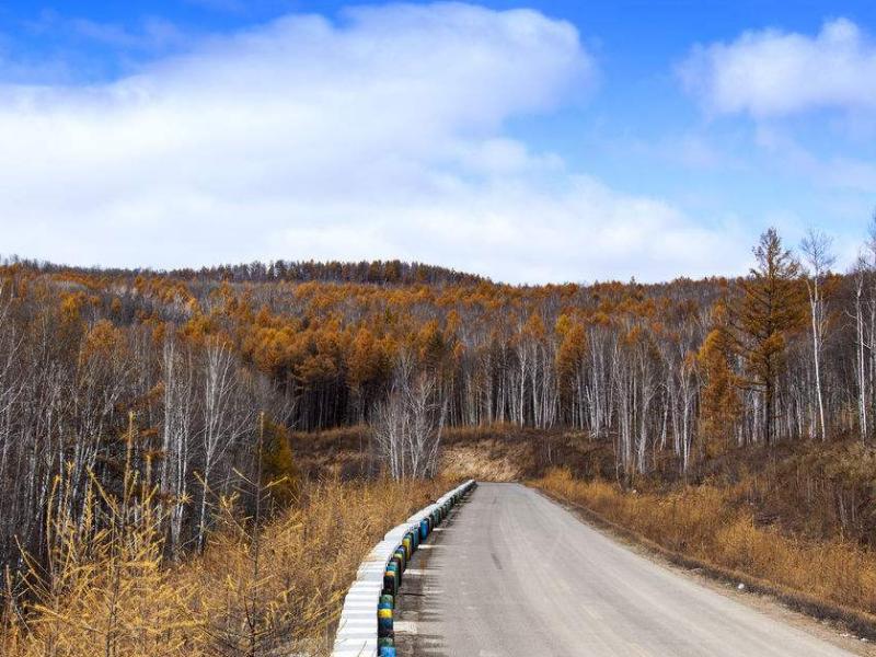 呼伦贝尔的秋季美在哪里介绍