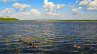 呼伦贝尔满洲里二卡湿地旅游情况攻略