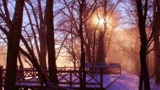 冬季额尔古纳湿地旅游是什么样子攻略