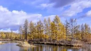 呼伦贝尔大兴安岭新增三座国家级湿地公园