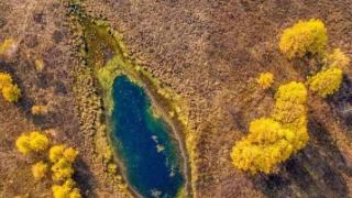 额尔古纳市莫尔道嘎成为2018年全国森林旅游示范市县