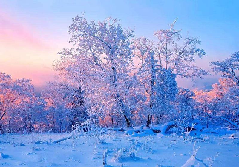 冬季呼伦贝尔两天一晚阿尔山旅游路线