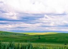 去呼伦贝尔草原旅游是自由行好还是跟团好