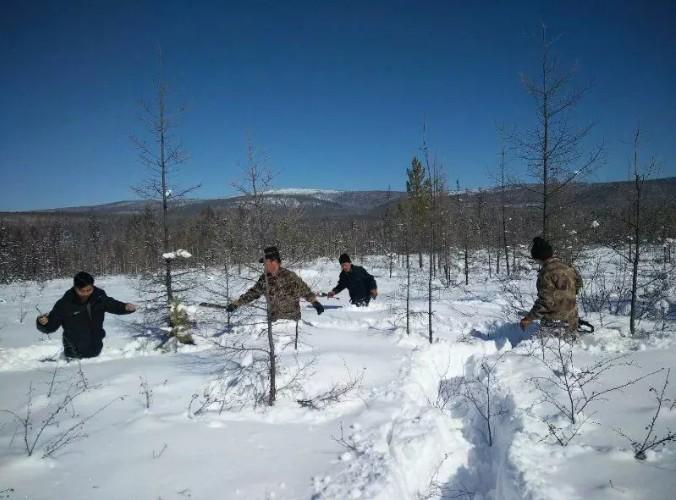 内蒙古大兴安岭林区18厘米大雪
