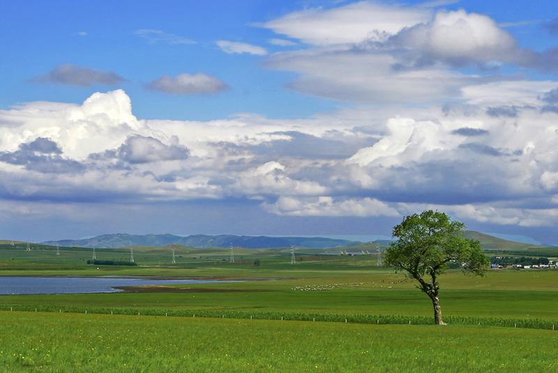真惠玩呼伦贝尔大草原、额尔古纳一日游线路推荐