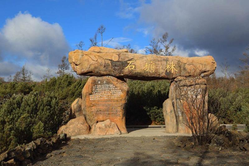 呼伦贝尔阿尔山国家森林公园石塘林