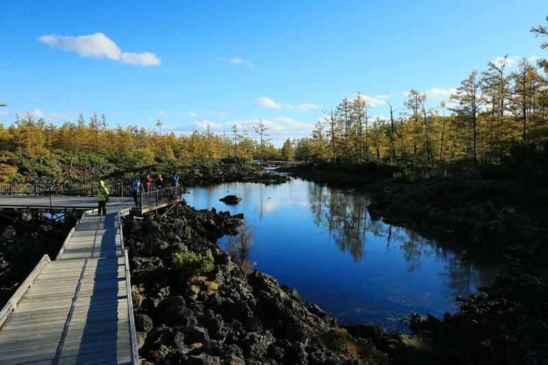 呼伦贝尔阿尔山国家森林公园石塘林在哪