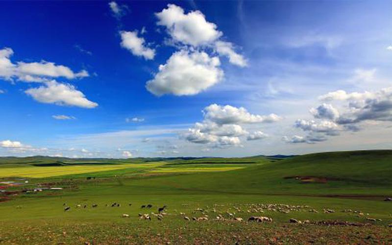 6天5晚呼伦贝尔-额尔古纳-漠河-哈尔滨旅游线路推荐
