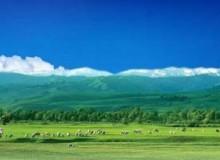 2019蒙古王尊享呼伦贝尔北线四日游