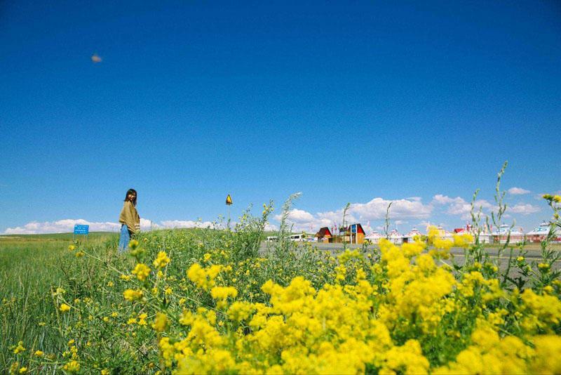 4天3晚呼伦贝尔大草原-恩和-满洲里旅游线路介绍
