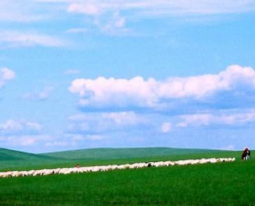 呼伦贝尔大草原七月到九月哪个时间段最适合旅游?