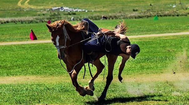 去内蒙古呼伦贝尔草原旅游攻略图片