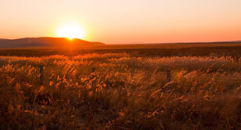 9月去呼伦贝尔大草原旅游攻略