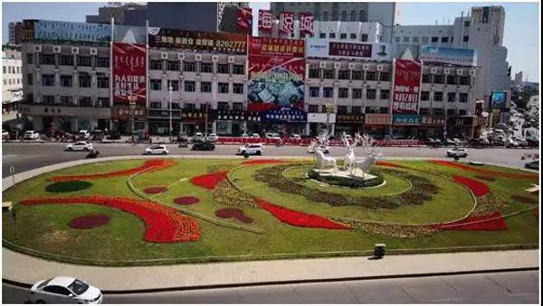 园林处提升海拉尔绿化档次 扮靓城市形象活动