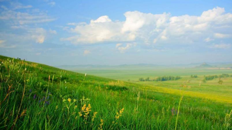 八月末去呼伦贝尔草原旅游草黄了吗?需要穿什么衣服攻略?