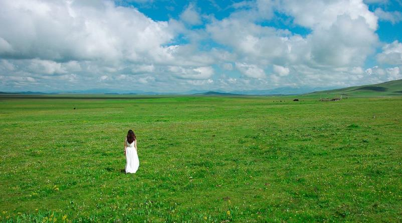 八月末去呼伦贝尔草原旅游草黄了吗?