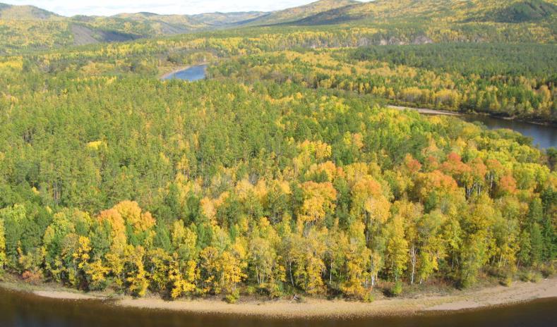 秋季呼伦贝尔一路向北七日游