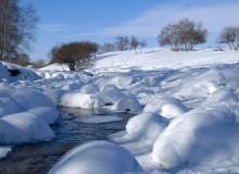 """农历大雪节气设立为""""呼伦贝尔冰雪日"""""""