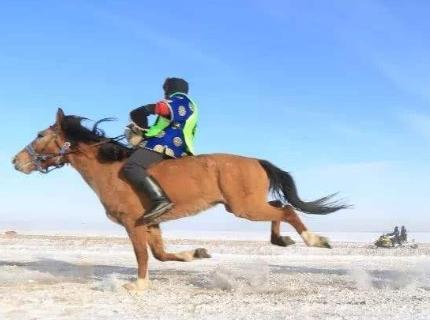 十二月到呼伦贝尔草原旅游有哪些好玩的