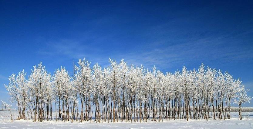呼伦贝尔林区冬季旅游需要注意的事有哪些?