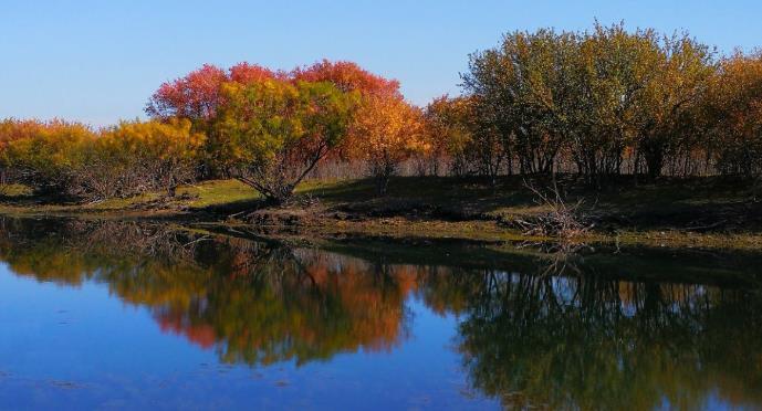 根河源国家湿地公园景区闭园