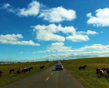 草原穿越是什么意思?好玩吗?