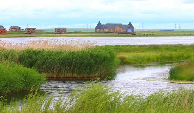 呼伦贝尔辉河湿地旅游攻略