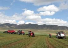 呼伦贝尔现代农牧业产业园发展如何?