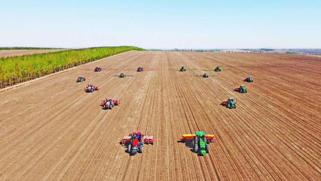 扎兰屯怎么推进现代农业产业体系建设