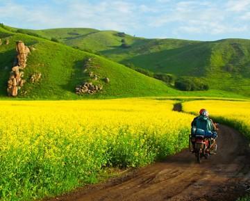 2020蒙古王草原-湿地-阿尔山-满洲里品质五日游