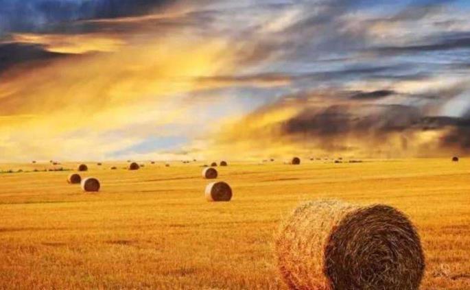 呼伦贝尔大草原旅游最佳时间